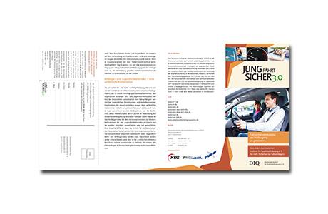 vsa-flyer-2013